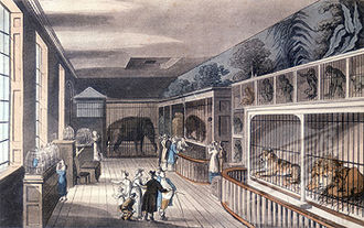 Exeter Exchange - The menagerie at Exeter 'Change, ca 1820