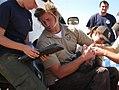 FWS biologist Joseph Brandt gauges the health of a condor (5040114916).jpg