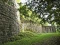 Falkenstein Burg Ringmauer.jpg