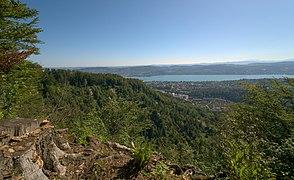 Fallätsche and Manegg from Ridge.jpg
