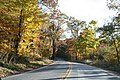 Fall foliage in Johnstown - panoramio (1).jpg