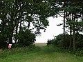 Farnton Hill - geograph.org.uk - 905038.jpg