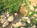Fatzael Springs and water system 043.JPG