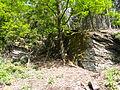 Felsen in der Dehl (Hoch-Weisel) 10.JPG