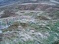 Fence-line, Foel Lwyd - geograph.org.uk - 63528.jpg