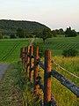 Fence - panoramio (3).jpg