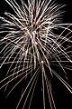 Fireworks - 20100724- DSC9134 (4831979009).jpg