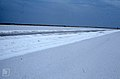 First swathe cut through salinas saltfield. Inagua. (37983852475).jpg
