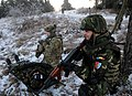 Flickr - The U.S. Army - Joint training (2).jpg