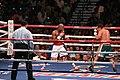 Floyd Mayweather, Jr. vs. Juan Manuel Márquez.jpg