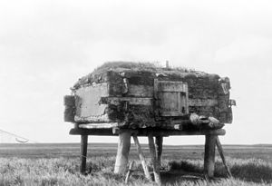 Food storage - Yup'ik elevated food cache (qulvarvik), Hooper Bay, Alaska, 1929. Photograph by Edward S. Curtis