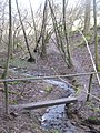 Footbridge in Manning's Wood - geograph.org.uk - 1754114.jpg