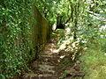 Footpath Steps. - geograph.org.uk - 503691.jpg