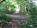 Footpath cross roads near fishing lake - geograph.org.uk - 1439857.jpg