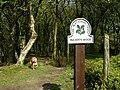 Footpath through Buckden Woods (west) - geograph.org.uk - 418039.jpg