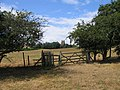 Footpath to Wychbold - geograph.org.uk - 211459.jpg
