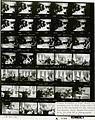 Ford A1144 NLGRF photo contact sheet (1974-10-01)(Gerald Ford Library).jpg