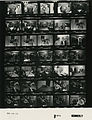 Ford B1071 NLGRF photo contact sheet (1976-08-15)(Gerald Ford Library).jpg