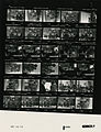 Ford B1091 NLGRF photo contact sheet (1976-08-16)(Gerald Ford Library).jpg