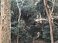 Forest in Toyouke Grand Shrine near Taka Shrine.jpg