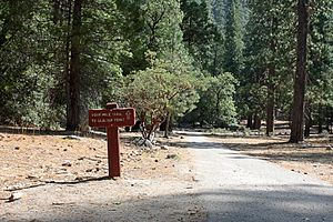 Four Mile Trail - The trailhead on the Valley floor