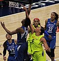 Fowles Cambage-20180523.jpg