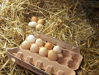 Protein (nutrient) - Image: Freerange eggs
