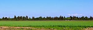 French Prairie - Looking northeast towards Mount Hood