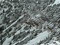 Fresh Snow Textures (5037820809).jpg