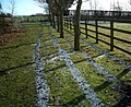 Frost Fence - geograph.org.uk - 1691549.jpg