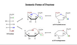 meaning of fructose