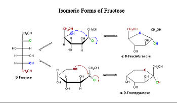 d glucose and fructose relationship marketing