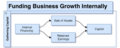 Funding Business Growth Internally.png