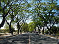 FvfSanFernandoPampanga0791 03.JPG