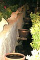 Garden,Shiraz - panoramio - *reza* (1).jpg