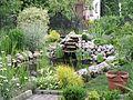 Garden pond 3.jpg