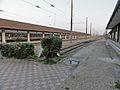 Gare de Trouville - Deauville 14.jpg