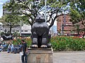 Gato - panoramio (2).jpg