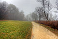 Gfp-wisconsin-madison-foggy-hiking-path.jpg