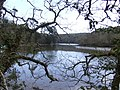 Gillan Creek - geograph.org.uk - 367445.jpg