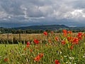 Gillies Hill from below Stirling Castle.jpg