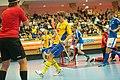 Goal by Jonas Svahn EFT Sweden-Finland.jpg