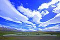 God in Heaven (2680132023).jpg