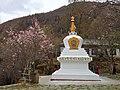 Gongbo'gyamda, Nyingchi, Tibet, China - panoramio (31).jpg