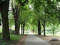 Grüneburgpark, Frankfurt - DSC01594.JPG