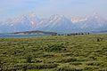Grand Teton & Jackson Lake 14.JPG