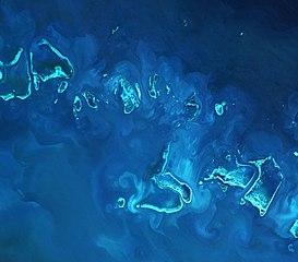 Great Barrier Reef ESA378130.jpg