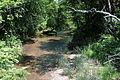 Green Creek near Rohrsburg, Pennsylvania looking upstream.JPG