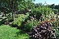 Green Spring Gardens in September (22765463276).jpg