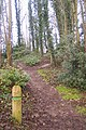 Green Trail to the Test Range, Oare Gunpowder Works - geograph.org.uk - 1624107.jpg
